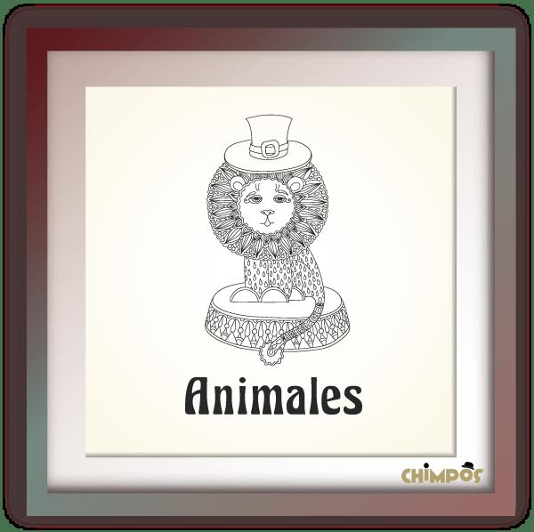Chimpos-tematica-Animales